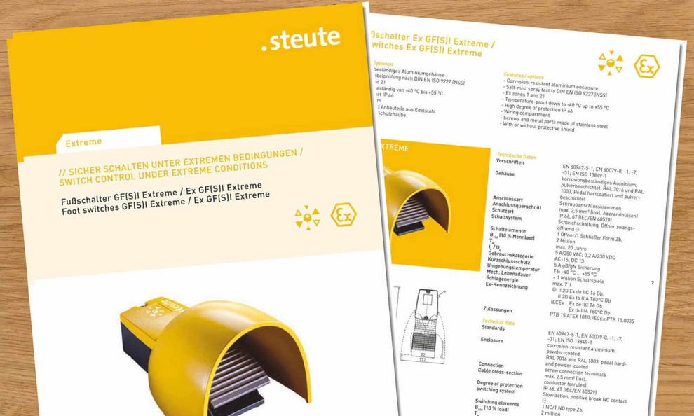 Heavy Duty Industrial Switches | steute Technologies